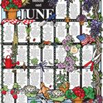 Посевной календарь июнь