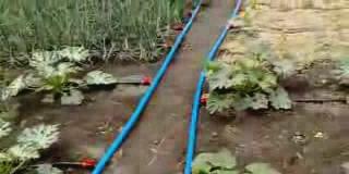 Капельный полив видео