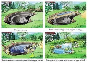 четыре шага сделать пруд на даче