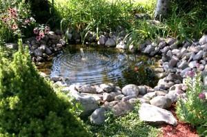 оформляем природный пруд