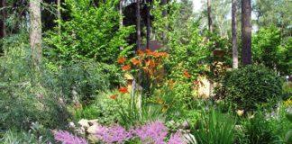 оформление природного сада цветником