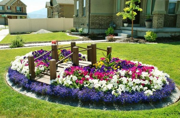 Многолетние цветы: как разбить клумбу